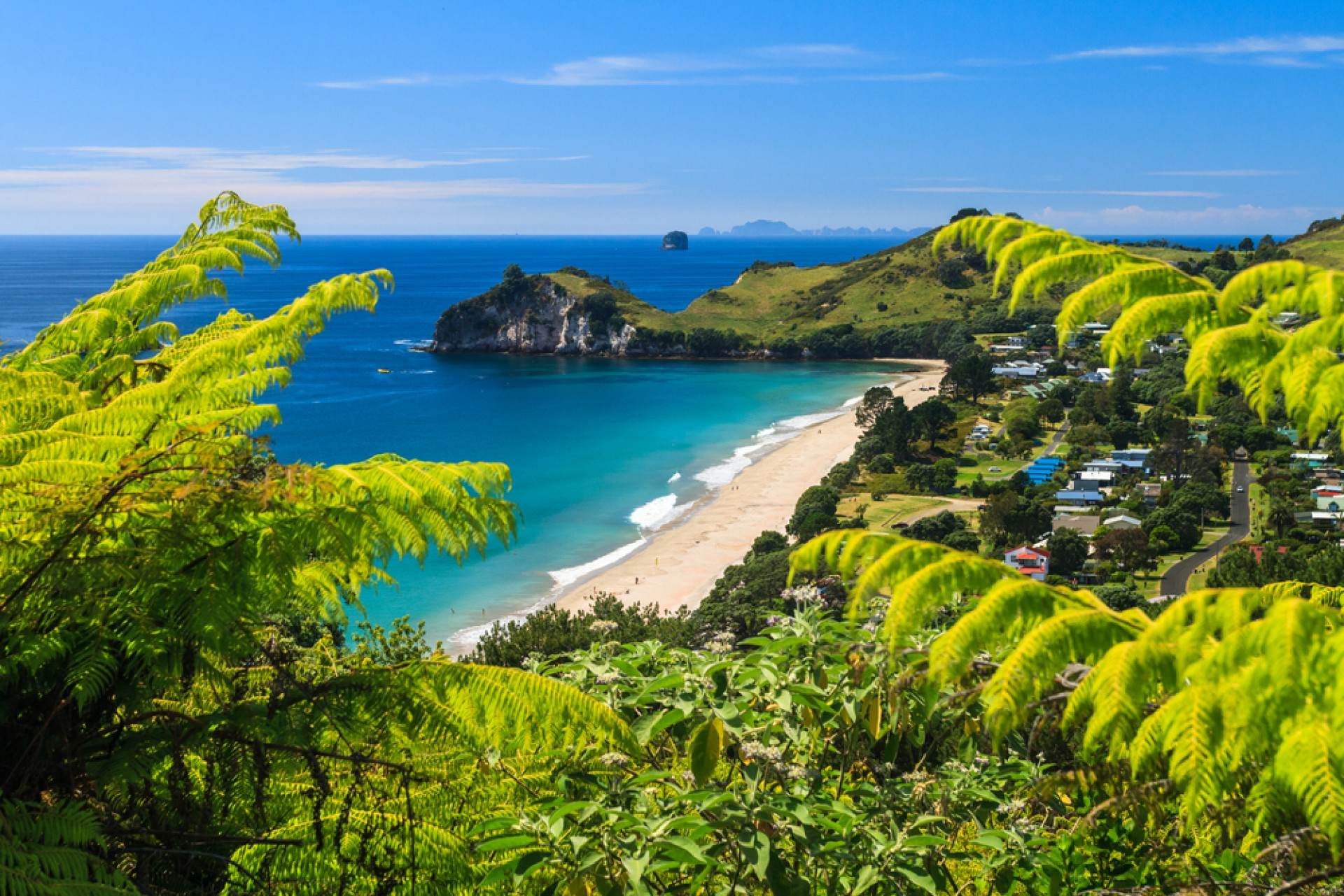 Northern Coromandel Secluded Secrets