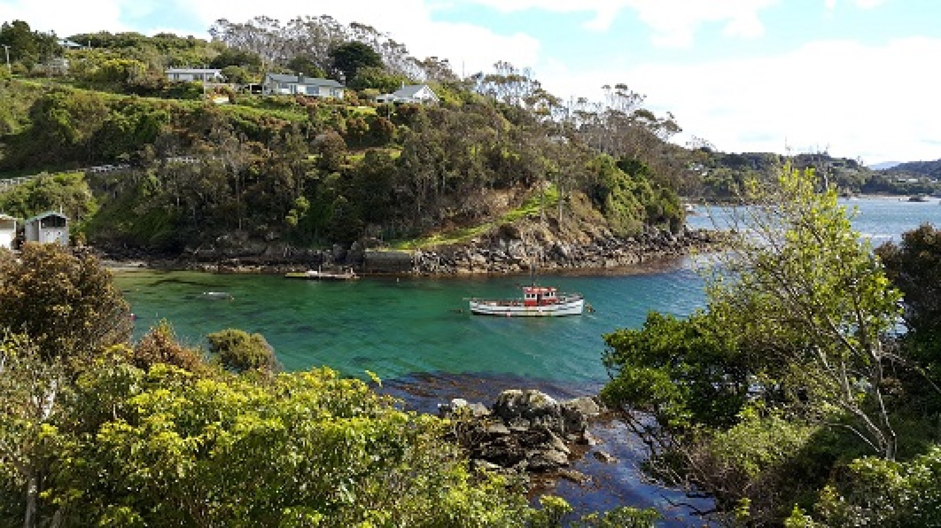 South of the South, Stunning Stewart Island