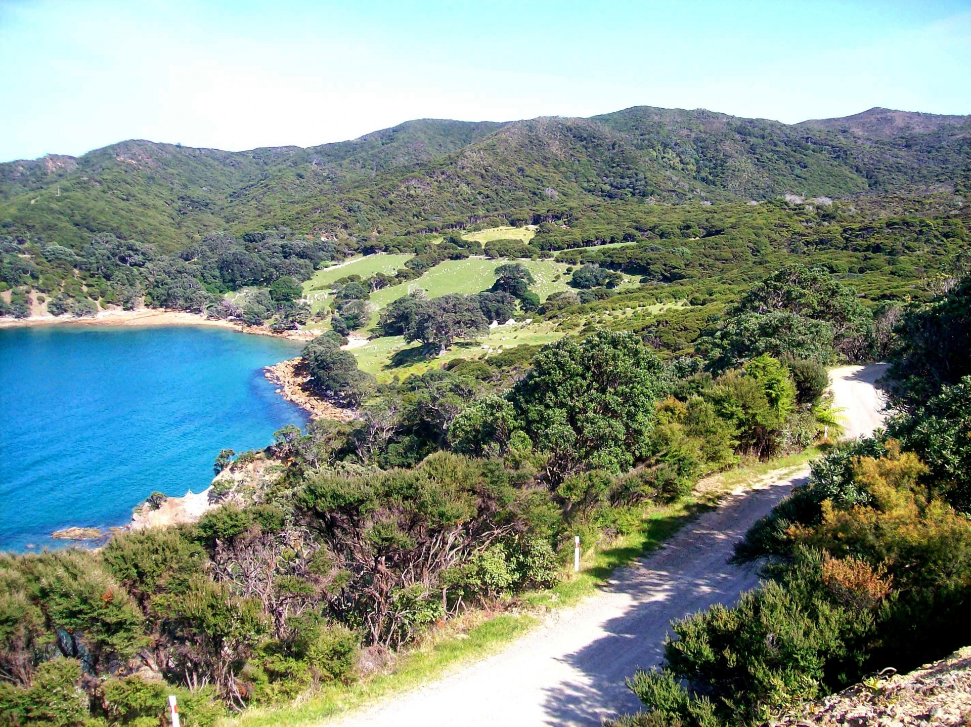 Great Barrier Island Guided Tour