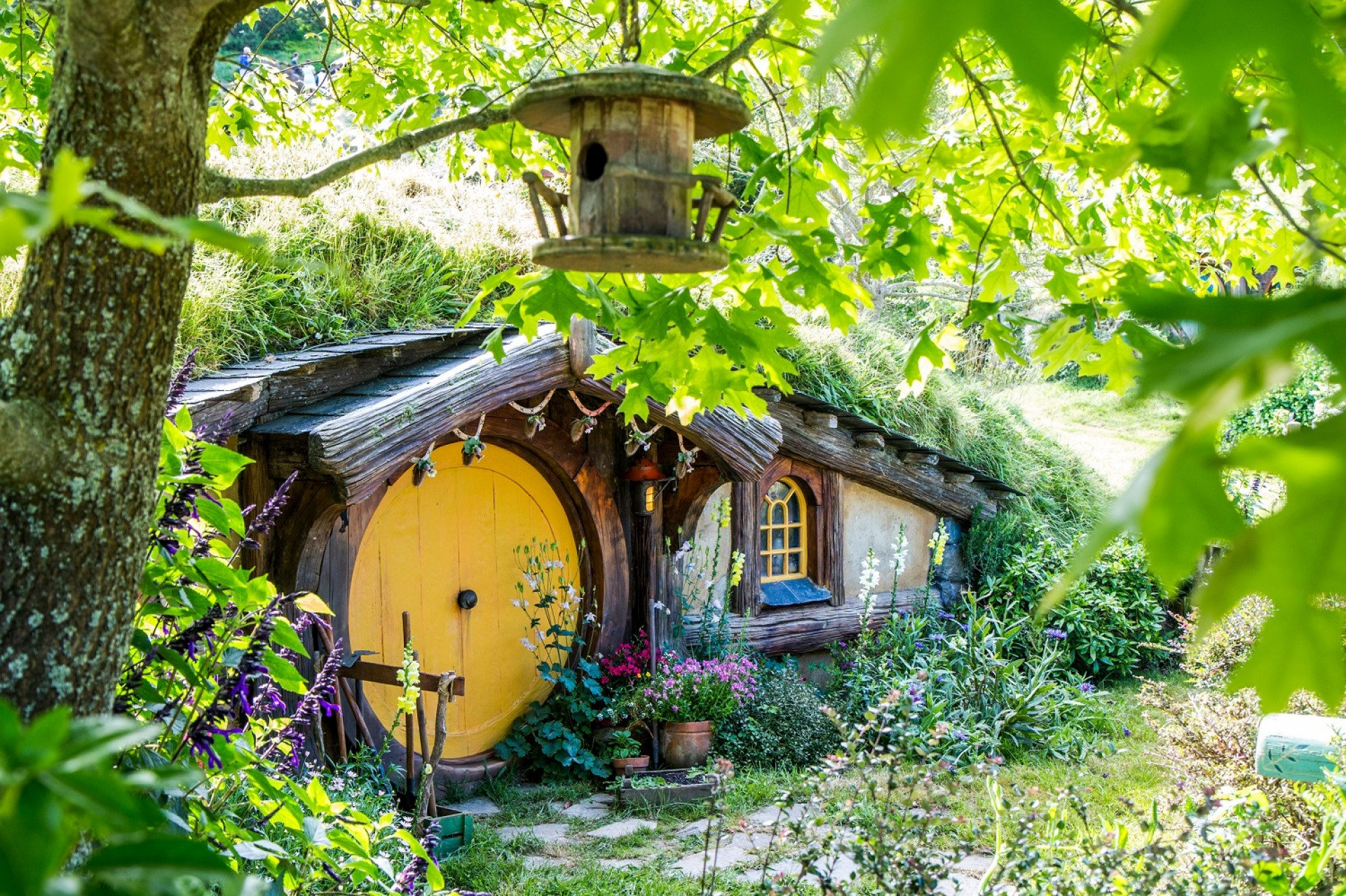 Travel West to Hobbiton and Experience Shire Enjoyment