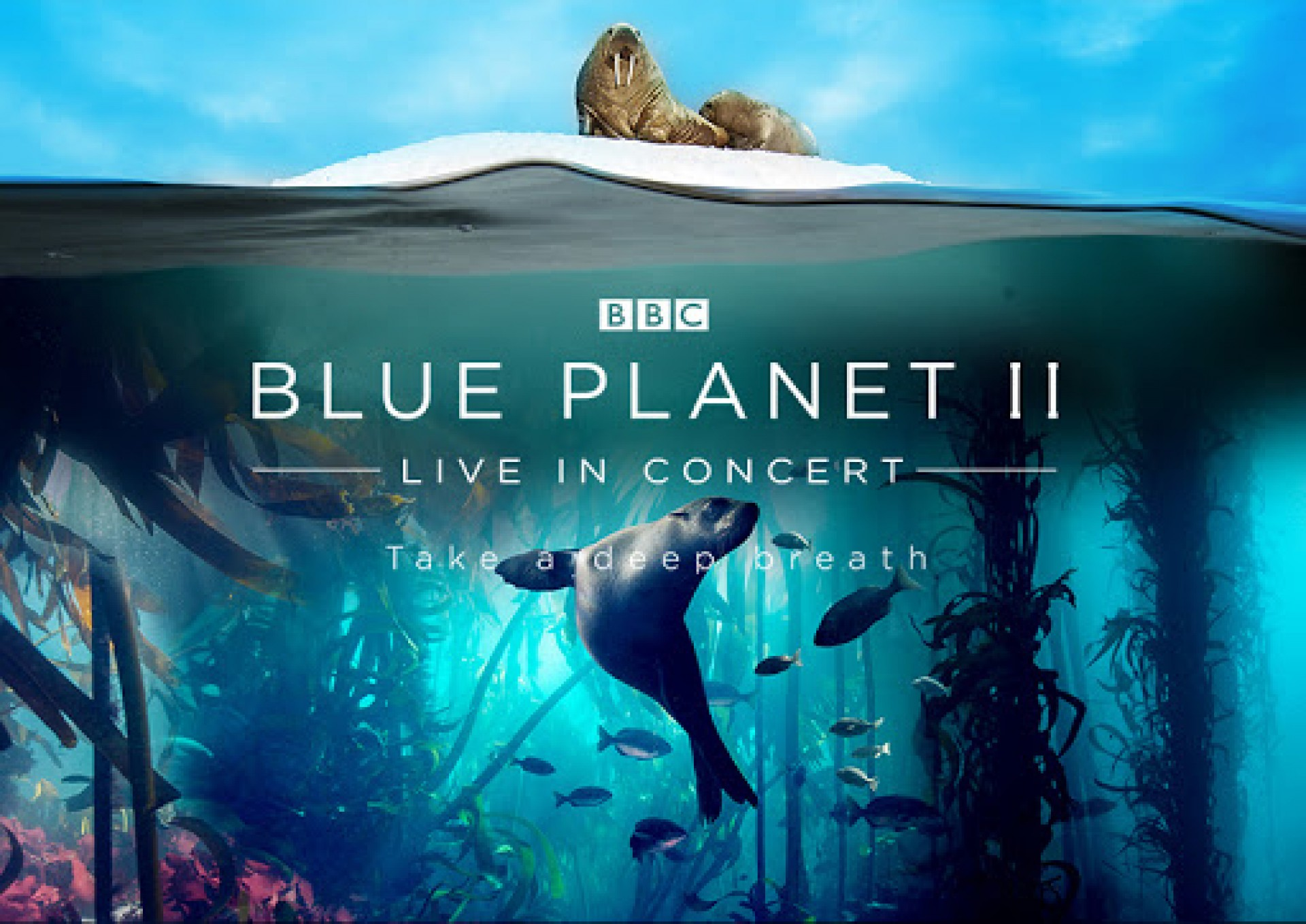 Blue Planet II - Live with the Auckland Philharmonia Orchestra